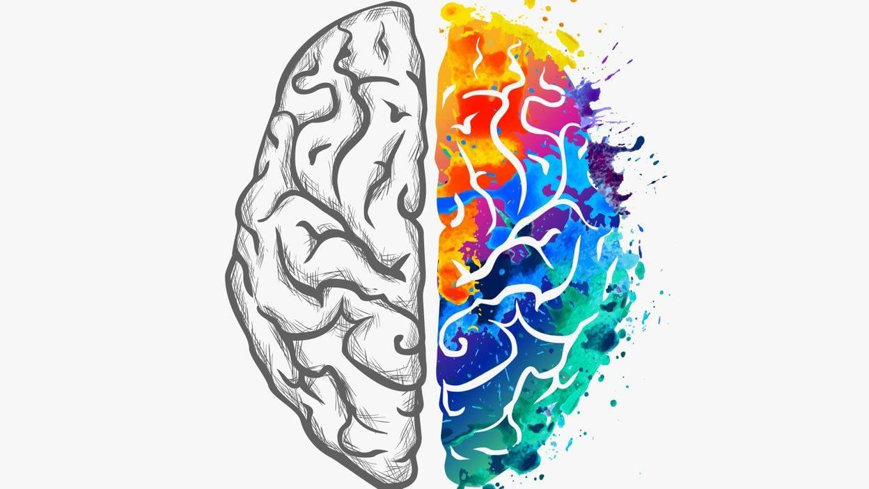L'activité de l'hémisphère gauche et droit du cerveau